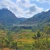 Keindahan Pemandangan Terasiring Candi Selogriyo Magelang