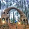 Hutan Pinus Pengger Tempat Wisata Unik dan Instagramable